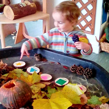 child nursery autumn tuff tray.jpg