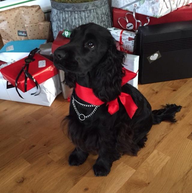 Mika väntar på julklappar