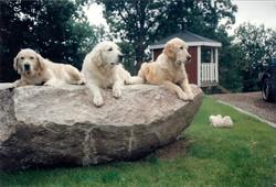 Kajsa, Nicke och Daisy