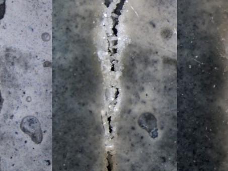 BIOCONCRETO, que tal um concreto que regenera sozinho?
