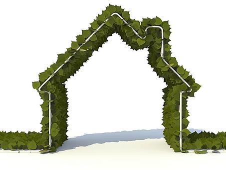 Telhado verde: ajuda mesmo ou é papo furado?