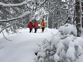Schneeschuhlaufen Maloja Engadin