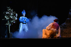 CHS Aladdin