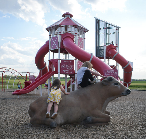 Two girls climb on the cow in front of the Chaney's playground.
