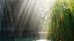 Simchat Torah Rain