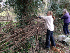 Constructing the Allotment Fence