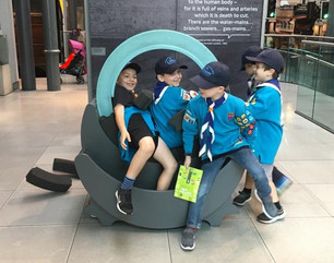 Beavers LT museum