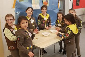 Brownies Tu Bshevat Jan 2019