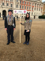 Scouts Mitzvah Day