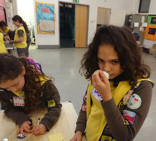Brownies 5 Senses Badge