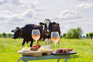 Kaas en Koeien in het Weiland