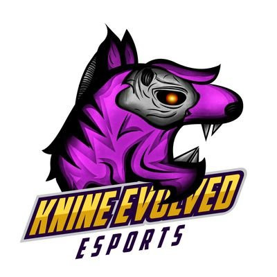 Knine Evolved Esports