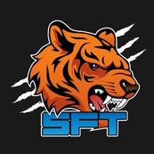 SFT Esport