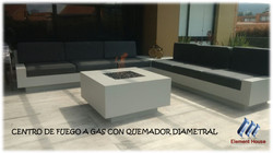 CHIMENEAS A GAS ELEMENT HOUSE (31)