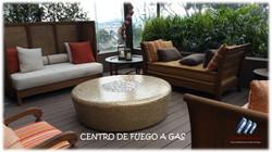 CHIMENEAS A GAS ELEMENT HOUSE (4)