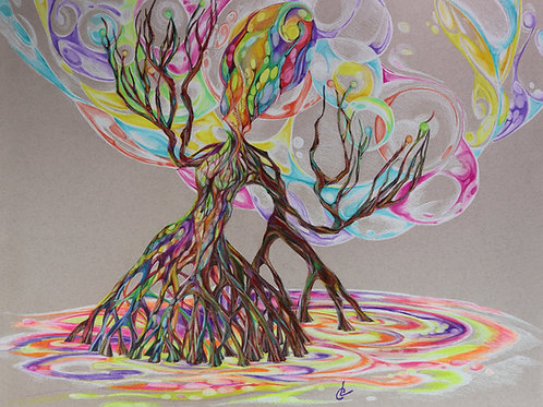 """Roots in Rainbows"""