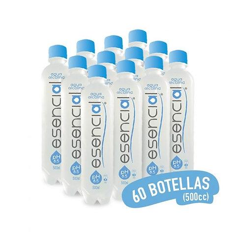 60 Botellas 500 cc Agua Alcalina