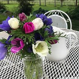 Bleeding-Heart-Flower-Farm-Anemones