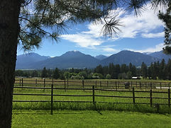 Bleeding-Heart-Flower-Farm-Montana-Weddi