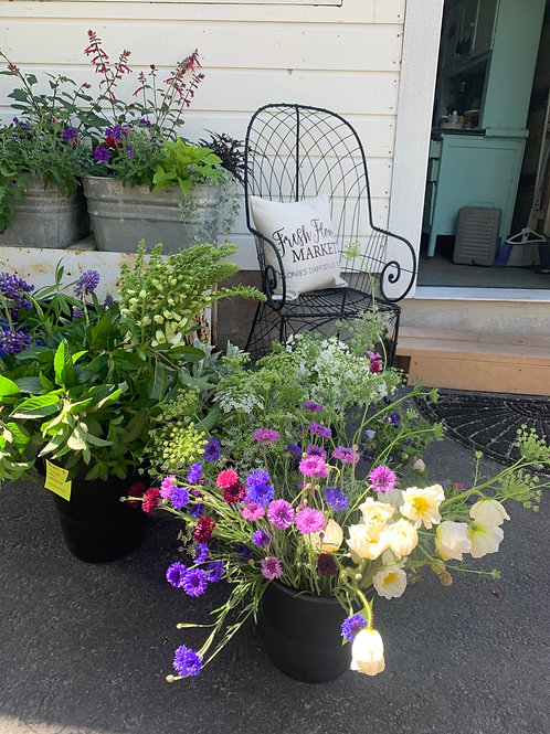 Blooming Buckets