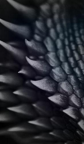 dragon scales black.jpg