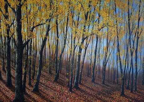 P521 low autumn sunlight 700 x 1000.jpg