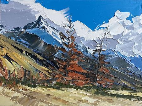 Glen Tanner, Mt Cook.jpg