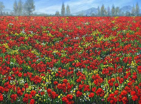 P528 Tuscany poppy fields 900 x 1200.jpg
