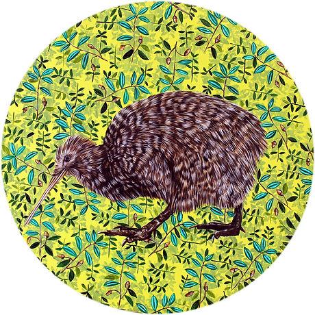 North-Island-little-spotted-brown-Kiwi.j