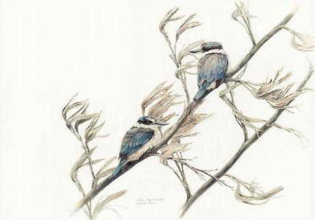 Kingfisher lookout.jpg