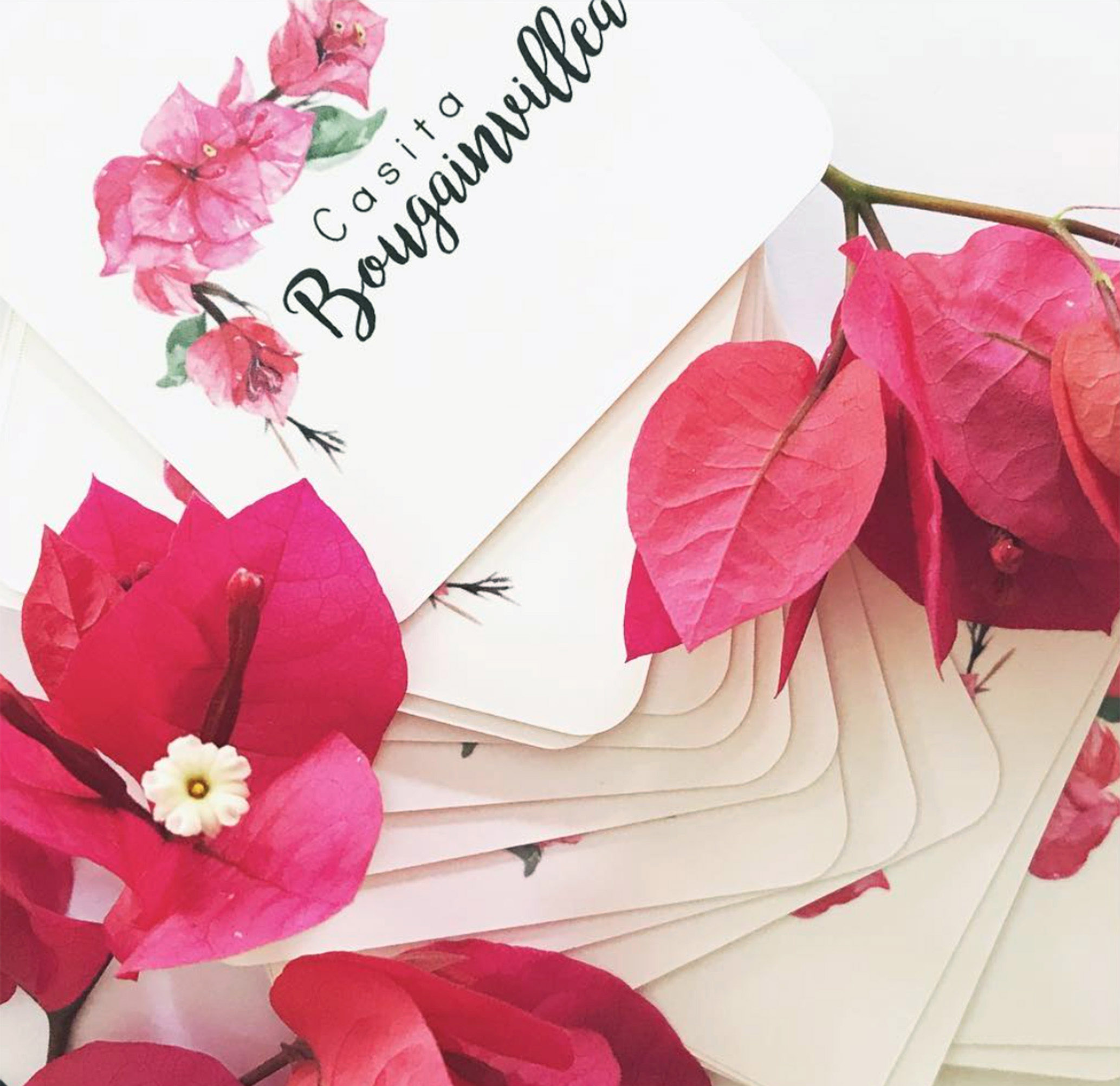 Casita Bougainvillea logo design