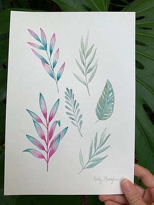 Tropical Botanicals 1
