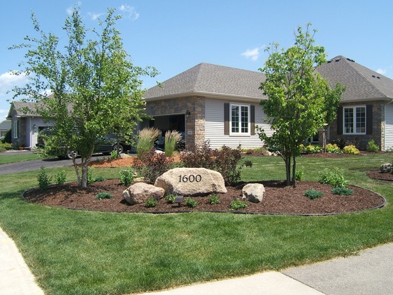 Complimenting your house with the right plants