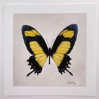 King Swallowtail Hand Embellished Lim. Edit.