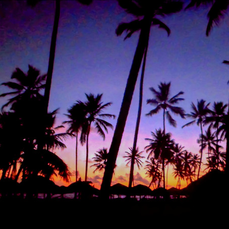 TOP 5 THINGS TO DO IN PUNTA CANA