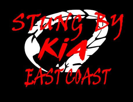 Stung by Kia Decal 3x6 (CHOOSE YOUR REGION)