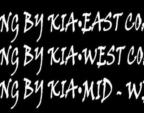 "Stung by Kia  20""x 2"" Banner (CHOOSE YOUR REGION)"