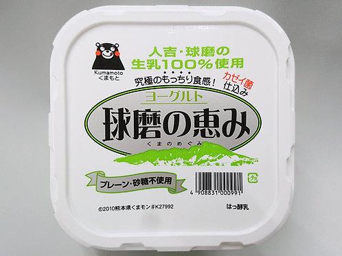 【砂糖不使用】ヨーグルト 球磨の恵み 1kg 6パック入
