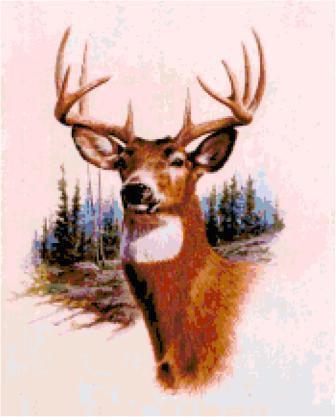 Deer Cross Stitch Chart