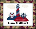 Nautical Camoflauge Cross Stitch Pattern