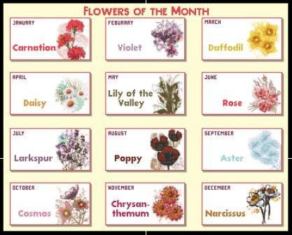 Flowers of the Month