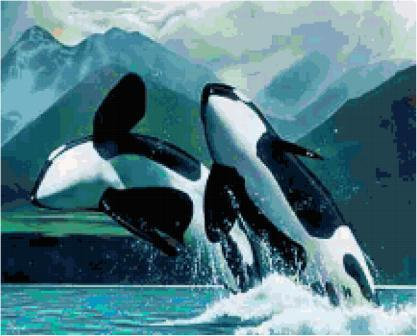Oeca Whales Cross Stitch Pattern