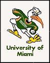 University of Miami Cross Stitch