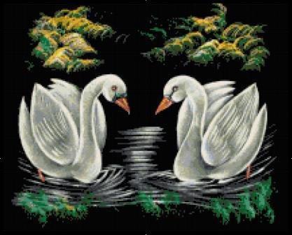 Demur Swans