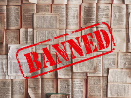 Book Ban?! Huh? UPDATE!! Amazon reinstated 720 Linden Street as of August 20, 2019!