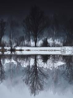 THE DARKER THE LAKE