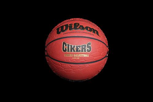 """Мяч баскетбольный серии """"Жилы Дракона"""" Wilson Cikers"""