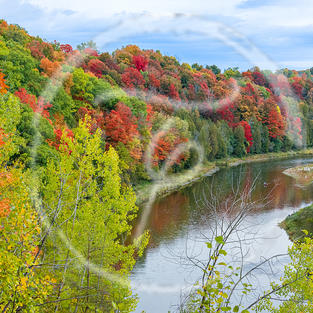 Grand River Fall Colours