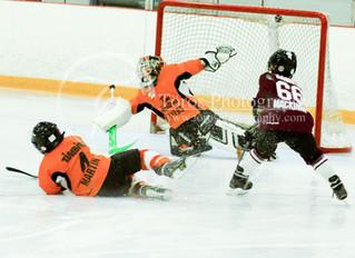 Hockey is Canada's Sport!