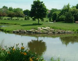 Kraml-Park-is-a-great-place.jpg